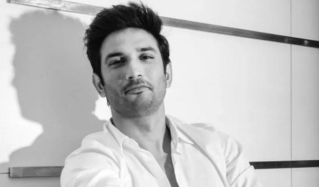 what could have sushant rajput done